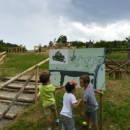 campo-estivo-bambini-bologna-1