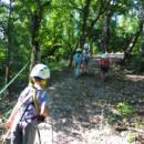 escursioni-bosco-campo-estivo-bologna