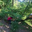 parco-avventura-natura-bambini